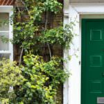 Entrance Doors, London